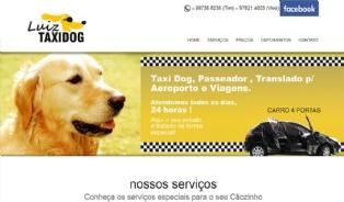 Luiz Taxi Dog